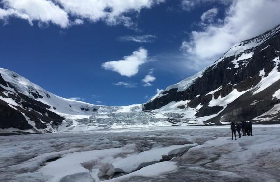 Glacier Athabasca, Jasper, AB