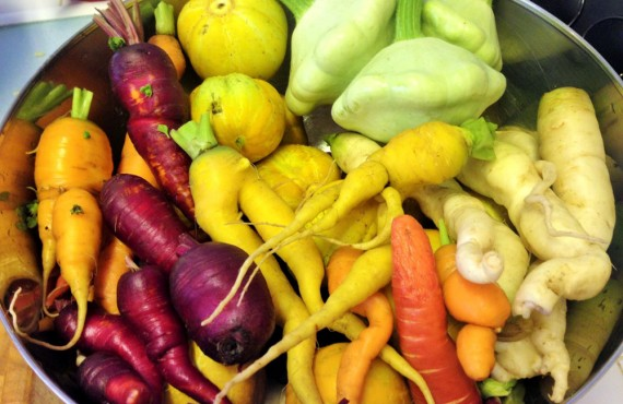 Spring Manor - Légumes frais du jardin