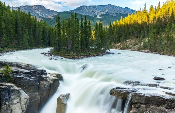 Sunwapta Falls, Parc national de Jasper