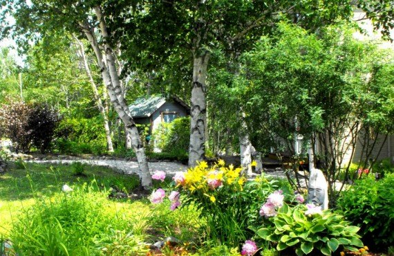 Auberge Cap aux Corbeaux - Jardin