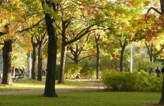 Auberge de La Fontaine - Randonnée au Parc La Fontaine