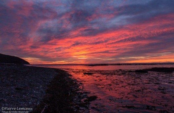 Un coucher de soleil violet
