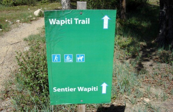 Camping Wapiti - Sentier Wapiti