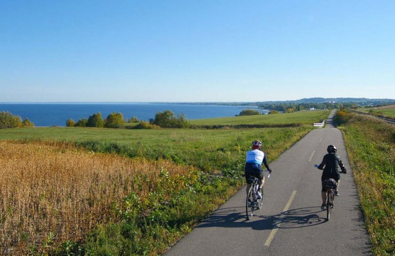 Cycling the Blueberry Route