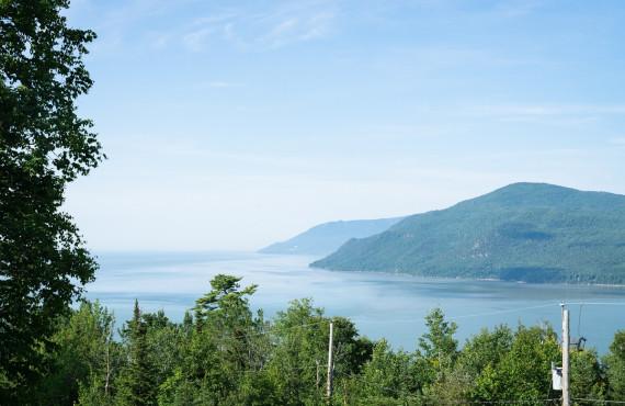 Gîte Nature et Pinceaux - River view