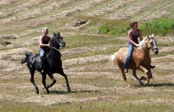9-aub-logpile-equitation