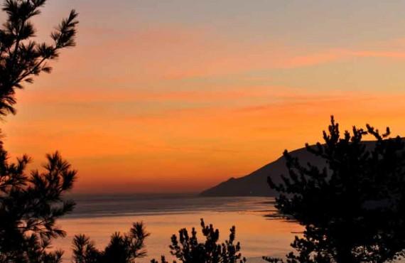 9-gite-nature-pinceaux-coucher-soleil