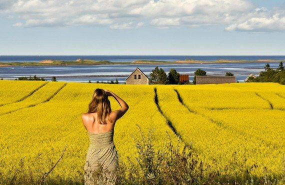 Typical Landscape of Prince Edward Island, Canada