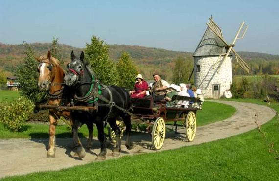 91-auberge-baluchon-carriole