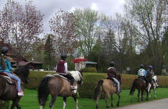 91-chateau-montebello