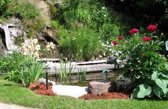 91-gite-roupillon-jardin