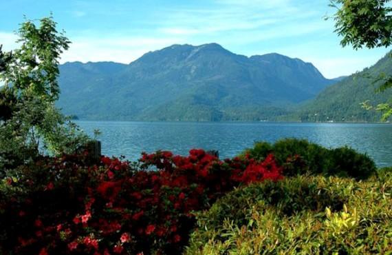 91-springs-rv-resort-harrison-lake