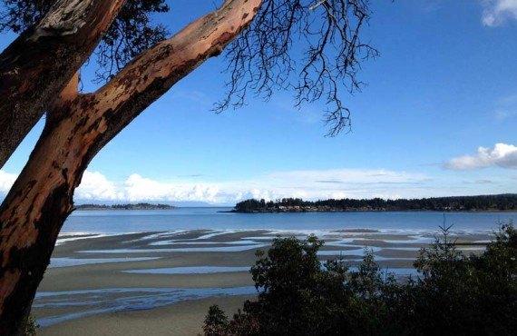 Tigh-Na-Mara - À proximité, plage