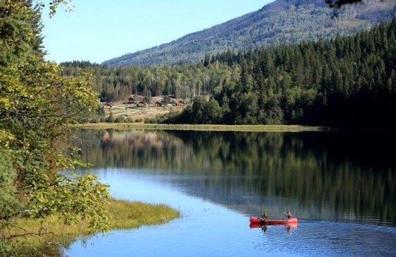Alpine Meadow Resort - Canot