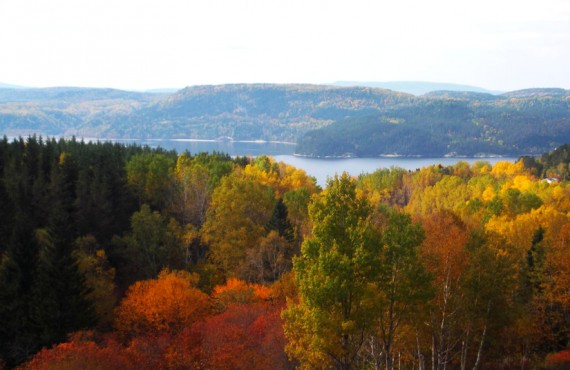 Saguenay Fjord View