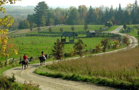 Pourvoirie du Baluchon - Randonnée à cheval