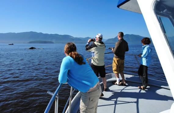 92-pourvoirie-canadian-princess-baleines
