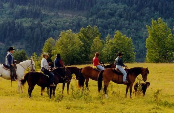 Ranch Nakiska - Équitation à proximité
