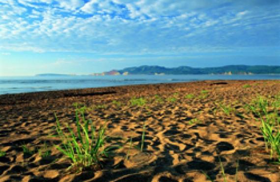 baie-des-chaleurs-plage.jpg