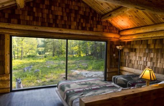 cabane-des-loup-1-600x400.jpg