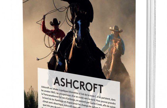 cover3d-ashcroft.jpg