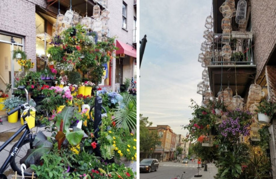 Fleuriste Dragon Flowers Mile-End