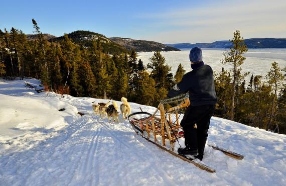 Traîneau à chiens avec vue sur le Fjord