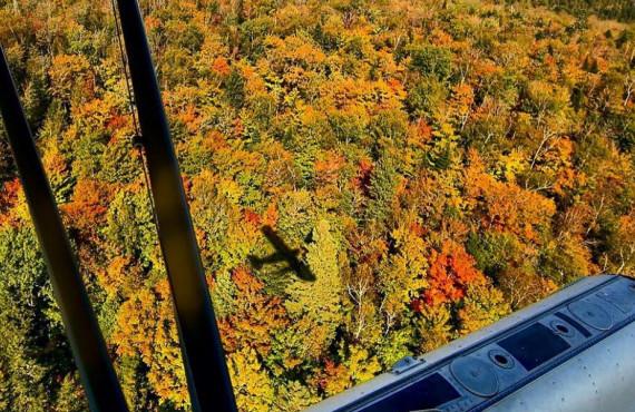 Vue aérienne d'un paysage d'automne au Québec