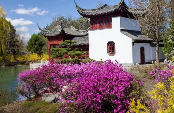 Jardin de Chine à Montréal