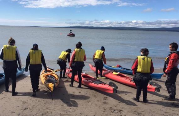 Observation de la faune du Québec en kayak