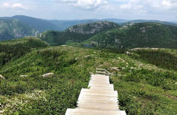 Passerelles de bois au sommet du Mont-du-Lac-des-Cygnes