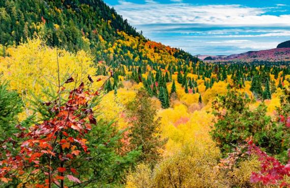 Paysage d'automne au Québec