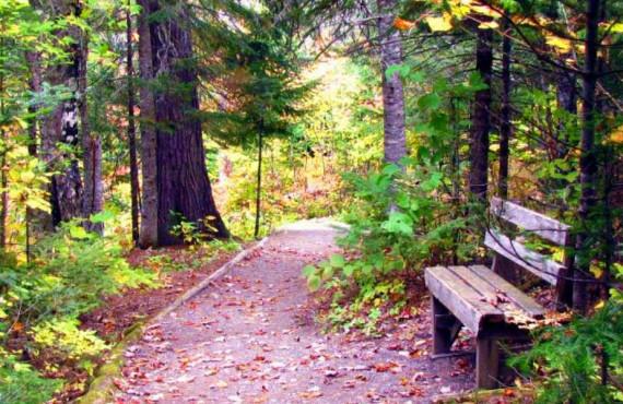Promenade d'automne au Canyon des Portes de l'Enfer