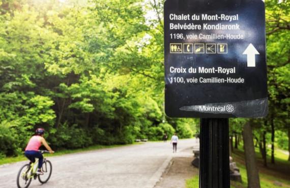 Piste de vélo au Mont-Royal