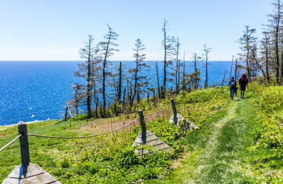 Sentier familial à l'île Bonaventure