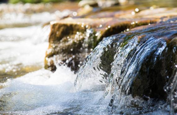 Petites cascades au parc national de la Jacques-Cartier