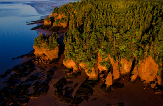 View of Hopewell Rocks from the air