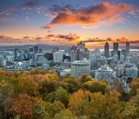 Downtown Montreal, view from Mount Royal