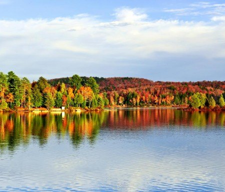 Oka National Park in the fall
