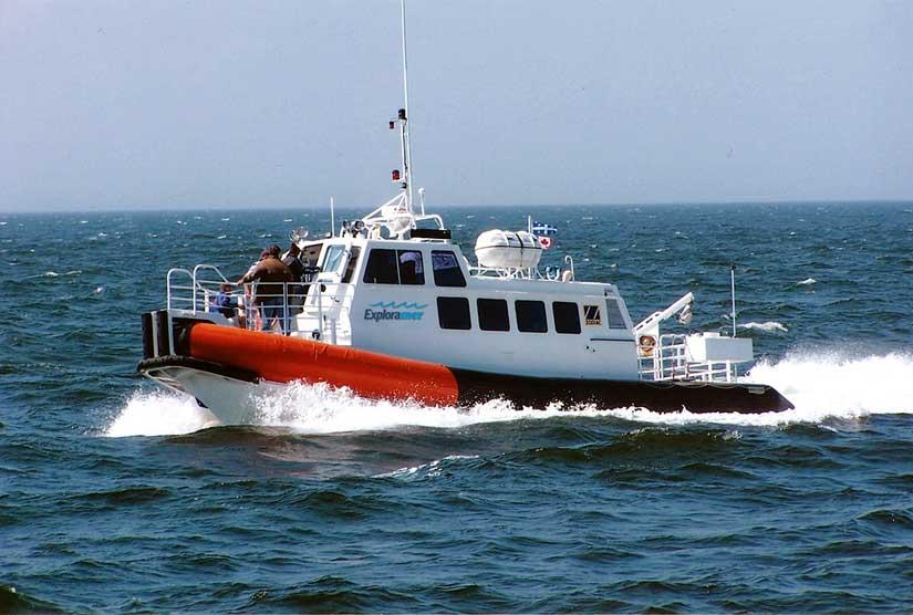 Sortie écotouristique en mer