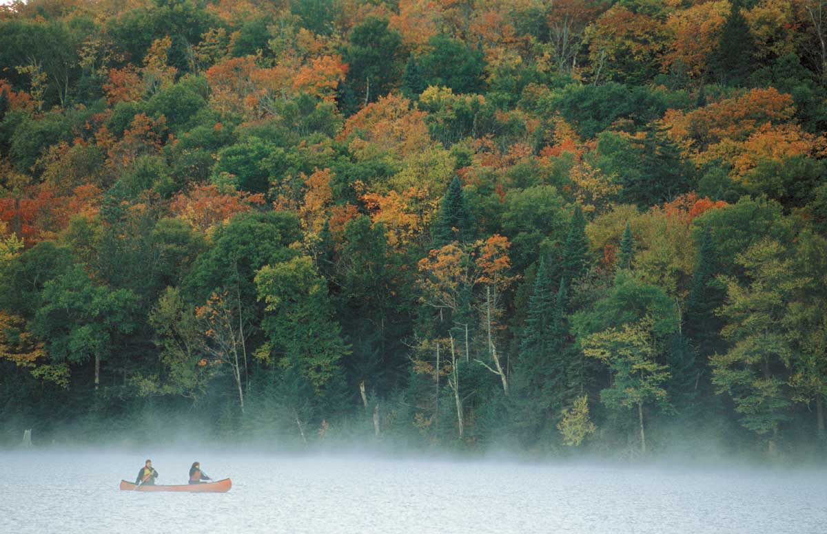 Pêche en automne