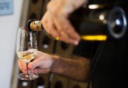 Dégustation des vins, Magog.QC
