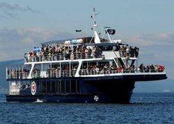 Safari aux baleines en bateau