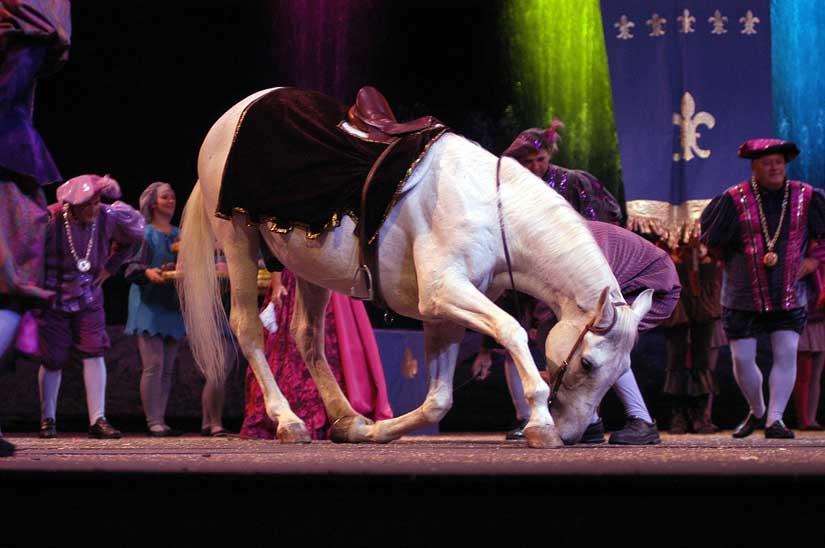 4-fabuleuse-histoire-royaume-cheval.jpg