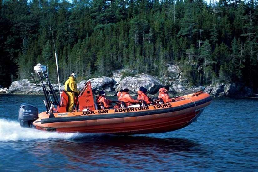 4-observation-baleine-orques-victoria-vancouver-zodiac.jpg