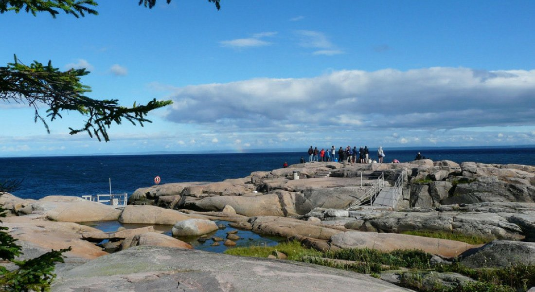 observation_baleines_Quebec_Bergeronnes