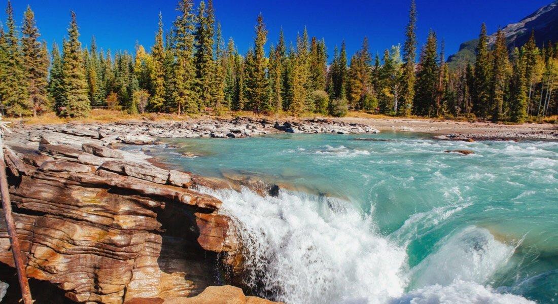 Les Chutes Athabasca, Parc national de Jasper, Alberta