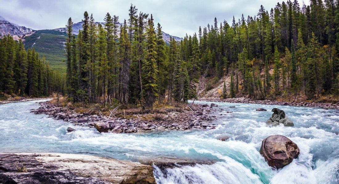 Les Chutes Sunwapta, Parc national de Jasper, Alberta