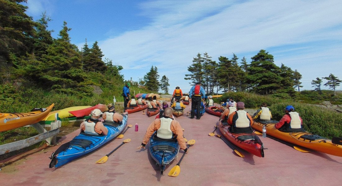 Observations des baleines à Tadoussac en kayak