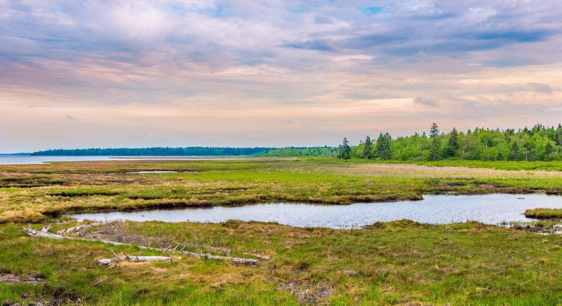 Kouchibouguac National Park, New Brunswick